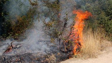 Продължава борбата с пожара в Сливенско
