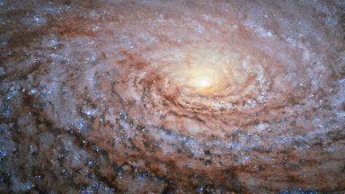 Учени: В галактиката ни има поне 36 извънземни цивилизации