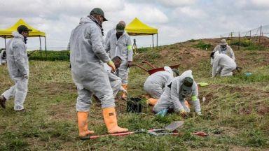 Археолози откриха човешки останки в Румъния до район с масов гроб