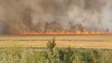 Голям пожар бушува на АМ