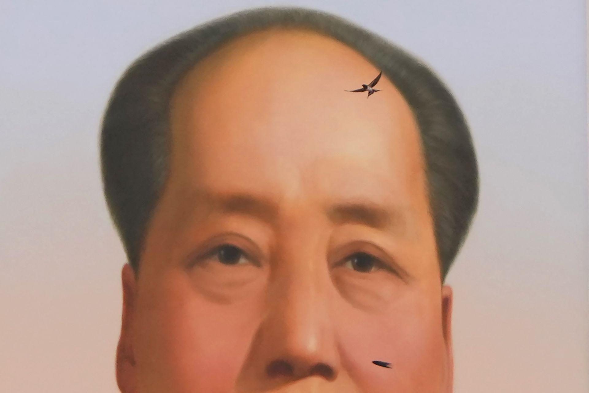 Лястовица лети близо до портрета на покойния китайски лидер Мао Дзедун по време на церемония по повод 100-годишнината от основаването на управляващата китайска комунистическа партия на портата Тянанмън в Пекин