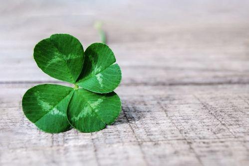 10 символа, носещи късмет